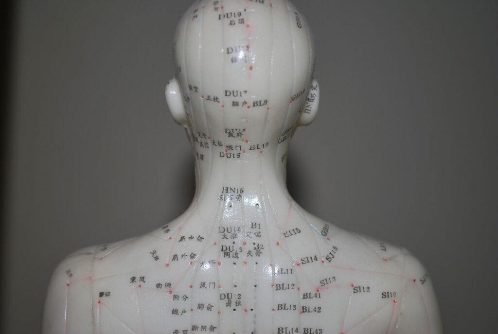 Abbildung verschiedener Akupunkturpunkte.